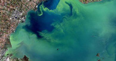 Ever Increasing Dead Zones Threaten U.S. Waters & Aquatic Life