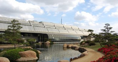 Considerations When Designing a Wastewater Treatment Plant