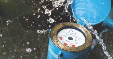 Digitizing to Survive?: Smart Water Metering