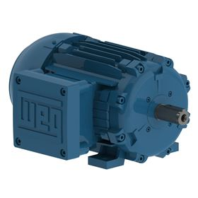 WEG supplied the W21 Series 3.0kW 2 pole Exd 11b T4 motor, an ATEX approved hazardous area motor.
