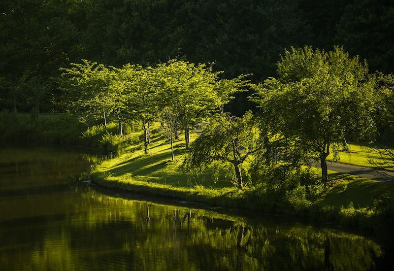 $225 Million Loan Helps Finance Water Reuse Project in Virginia