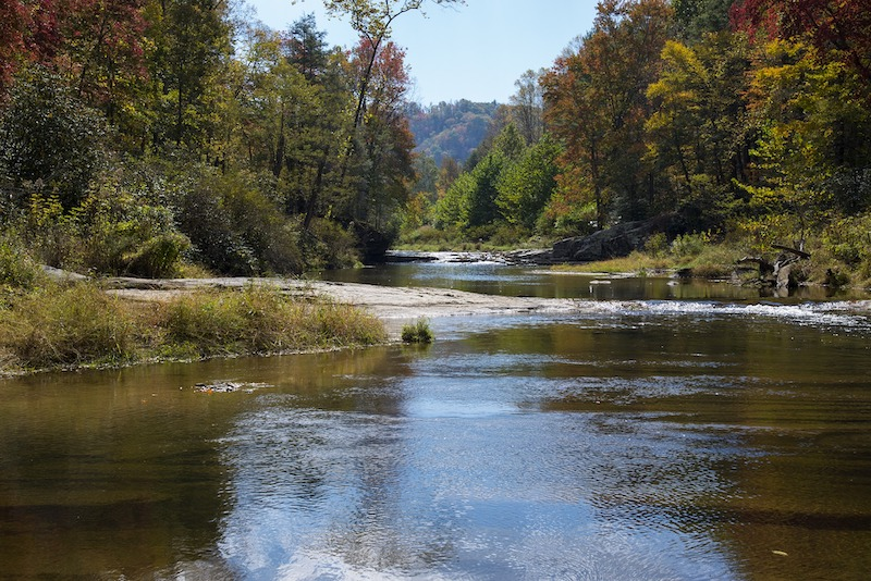 North Carolina Coastal Federation Releases Statewide Roadmap for Flooding and Water Pollution