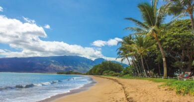 Study Examines Sea-level Rise & Wastewater Leakage to Coastal Waters