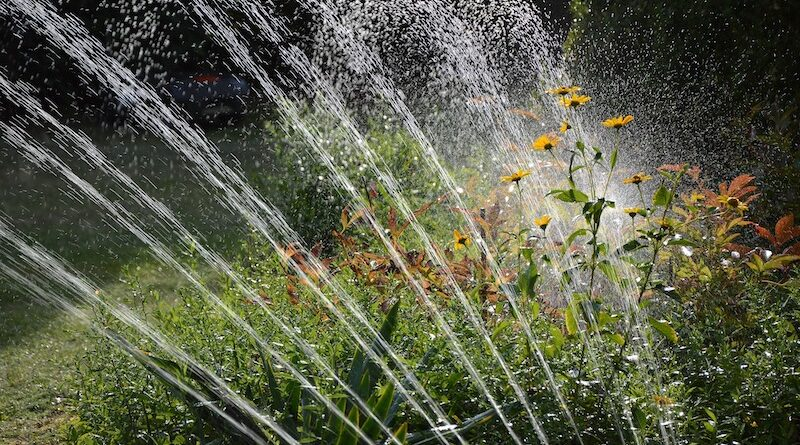 California County Implements Restrictions on Water Due to Extreme Drought Conditions