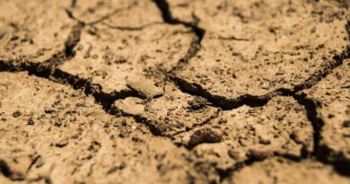 Drought Conditions Force Utility to Use Colorado River for Drinking Water