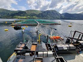 Alfa Laval adds to aquaculture portfolio